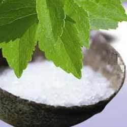 Stewia – zdrowy zamiennik cukru